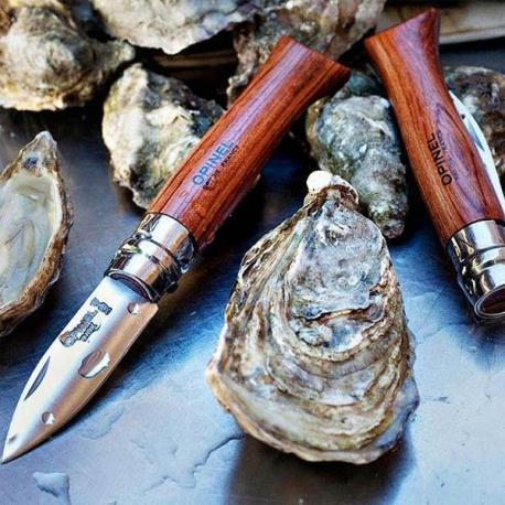 Canivete especial ostras